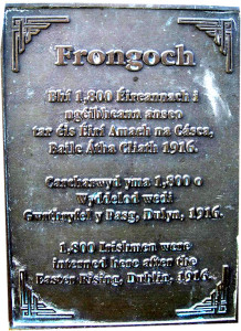 Frongoch plac