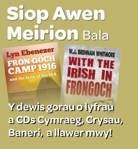 AwenMeirion Cymraeg